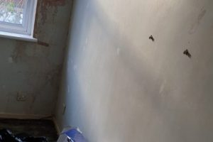 Before-Painting-Hole-Fill-Cracks-497x1024
